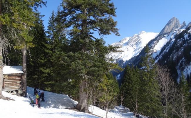 confort-montagne-DzeLaVoye (13)